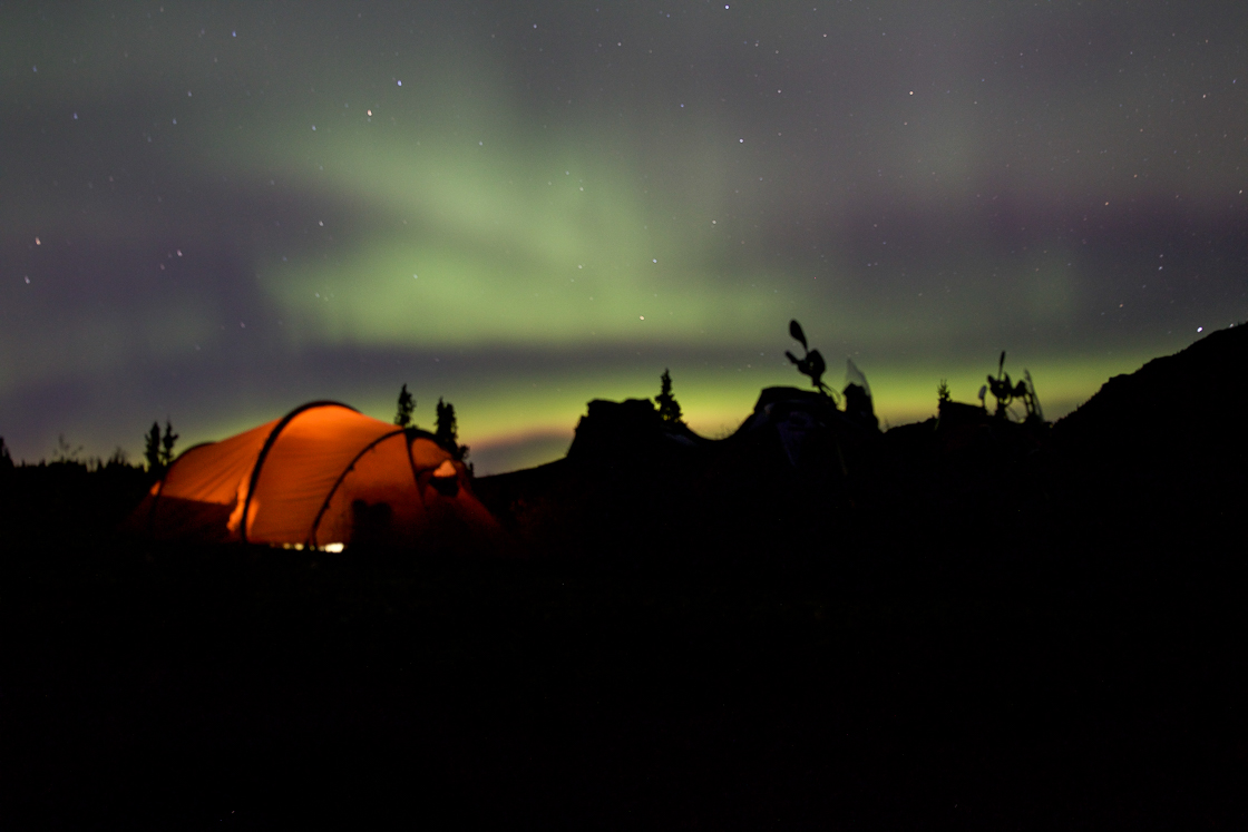 Northern lights while camping in Denali National Park